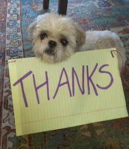 marketing thanks customers for referrals